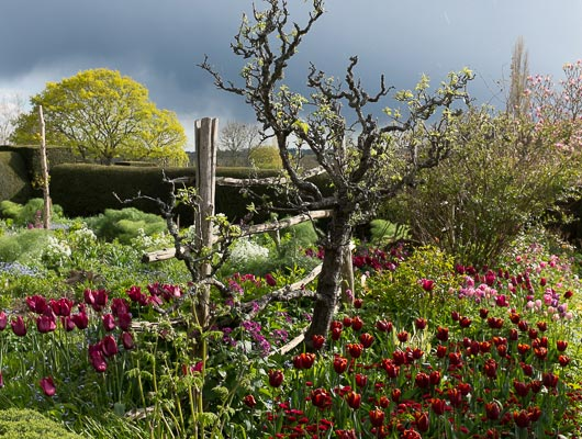 As the light changes, so does the atmosphere at Dixter.