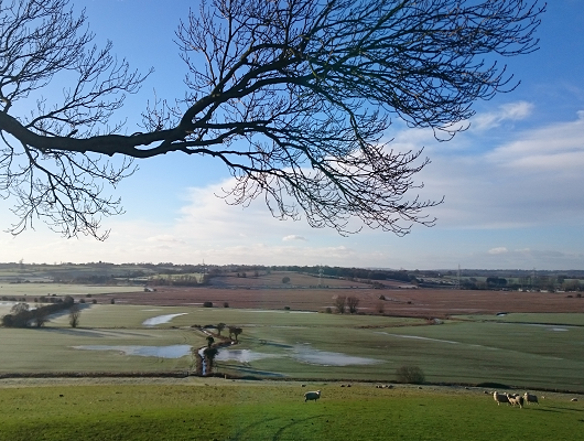 View from the farm, towards the River Rother