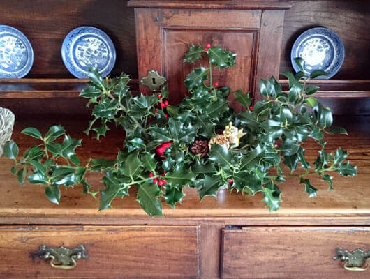 Some Christmassy Holly picked on the farm!